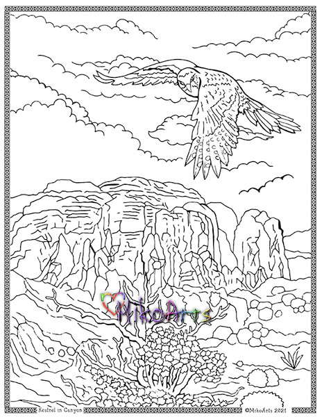 Coloring Page Kestrel in Canyon by Miko Arts 2021